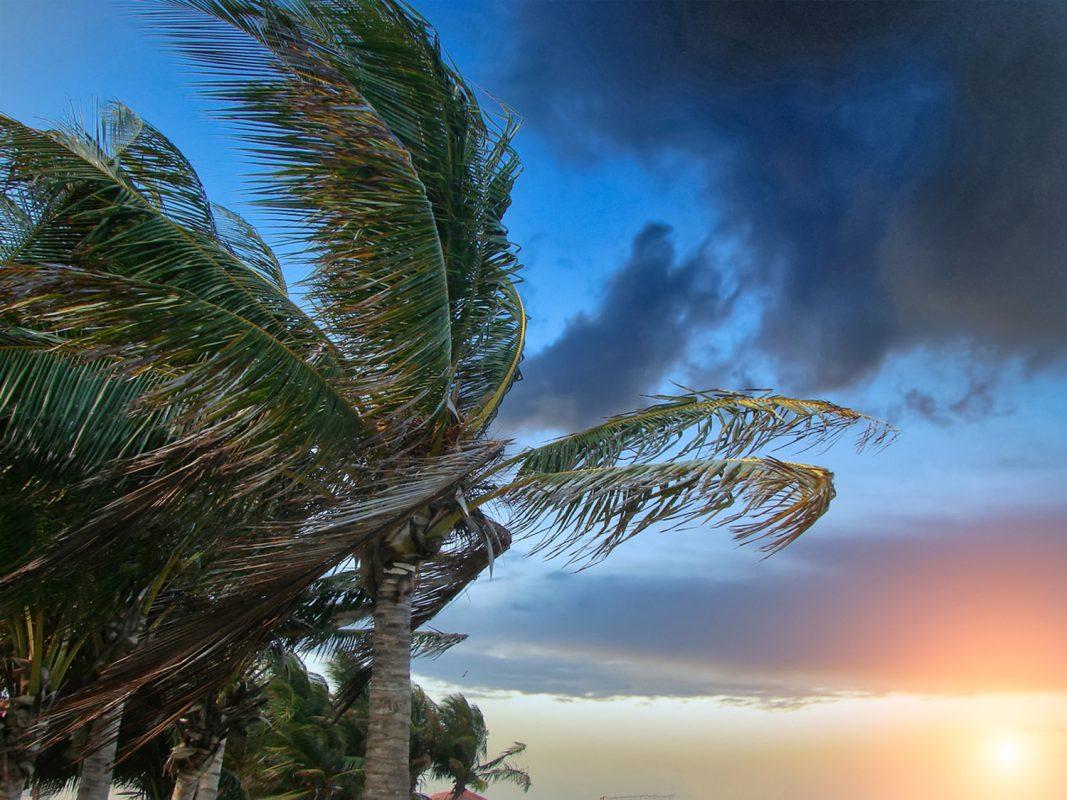 Hurricane Damage Miami FL